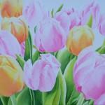 Tulpen geschilderd door Marian van Zomeren- van Heesewijk